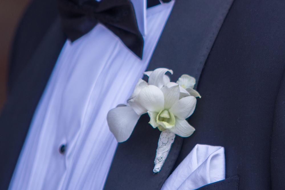 Cocarda orhidee