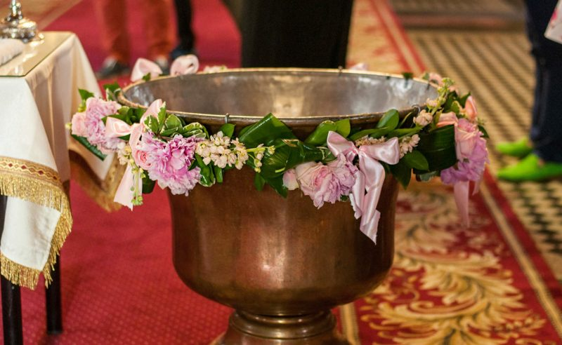decor cristelnita trandafiri bujori roz mathiola somon