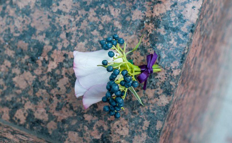 cocarda trandafir mov viburnum berries
